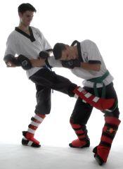 Wing Chun Eindhoven